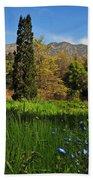 Wildflower Meadow At Descanso Gardens Beach Towel