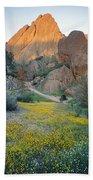 1b6430 Wildflowers In Pinnacles National Park Beach Towel