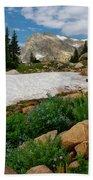 Wildflowers In The Indian Peaks Wilderness Beach Towel