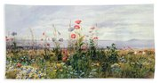 Wildflowers With A View Of Dublin Dunleary Beach Towel
