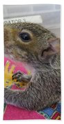 Wildlife Rehabilitation Beach Towel