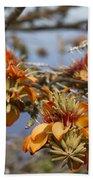Wiliwili Flowers - Erythrina Sandwicensis - Kahikinui Maui Hawaii Beach Towel