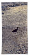 Willet In The Waves Beach Towel