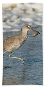 Willet With Sand Crab Beach Towel