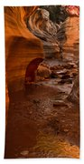 Willis Creek Slot Canyon Beach Towel by Robert Bales