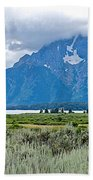 Willow Flats Overlook In Grand Teton National Park-wyoming   Beach Towel