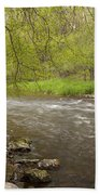 Willow River 3 Beach Towel