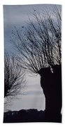 Willow Trees In Winter Beach Towel