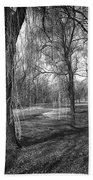 Willows In Spring Park Beach Towel