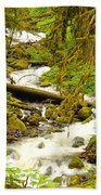 Winding Through The Forest Beach Towel
