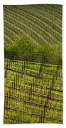 Wine Design Beach Sheet