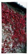 Winery Ivy Beach Towel