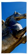 Winged Wonder II Beach Towel