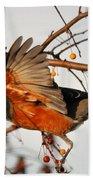 Wings Of A Robin Beach Towel