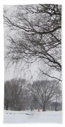 Winter Afternoon 4  2013 Beach Towel