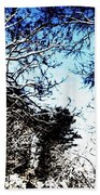 Winter Along The Bronx River Beach Towel