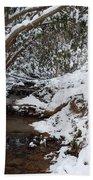 Winter At The Creek Beach Towel