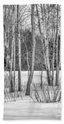 Winter Birches Beach Towel