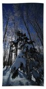 Winter Blue Beach Towel by Karol Livote