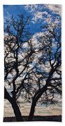 Winter Blue Skys Beach Towel