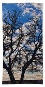 Winter Blue Skys Beach Sheet