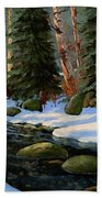 Winter Brook Beach Towel