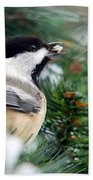 Winter Chickadee With Seed Beach Towel