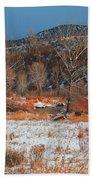 Winter Colors Beach Towel