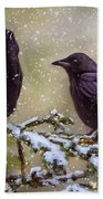 Winter Crows Beach Sheet