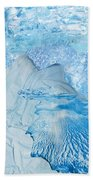 Winter Beach Towel by Denise Mazzocco