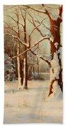 Winter Dream Beach Towel