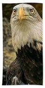 Winter Eagle Beach Towel