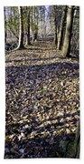 Winter Fall On The Trail Beach Towel