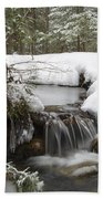 Winter Forest - Lincoln New Hampshire Usa Beach Towel