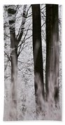 Winter Forest 1 Beach Towel by Heiko Koehrer-Wagner