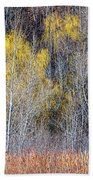 Winter Forest Landscape With Bare Trees Beach Towel