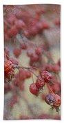 Winter Fruit Beach Towel