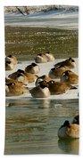 Winter Geese - 06 Beach Towel