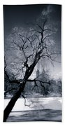 Winter In Central Park Beach Towel