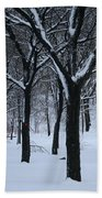 Winter In The Park Beach Towel