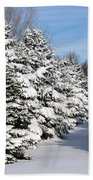 Winter In The Pines Beach Towel
