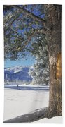 Winter In Yellowstone National Park Beach Towel