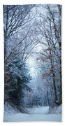 Winter Lane Beach Towel