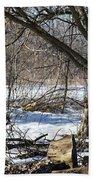 Winter Log Beach Towel