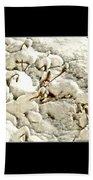 Winter Marigolds Beach Towel