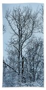Winter Morning View Beach Towel
