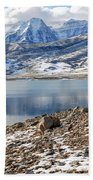 Winter Mt. Timpanogos And Deer Creek Reservoir Beach Towel