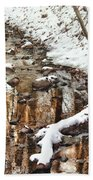 Winter - Natures Harmony Beach Towel by Mike Savad