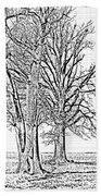 Winter Oaks IIi Beach Towel