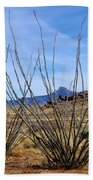 Winter Ocotillo Garden Beach Towel